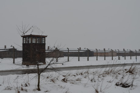 A view of Birkenau, the site of the memorial ceremony. (Toby Axelrod)
