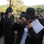 Men blowing shofars to help the unmarried find matches at the ceremony of the grave of Rabbi Yonatan ben Uziel in a forest near Safed, Jan. 27, 2013. (Ben Sales/JTA)